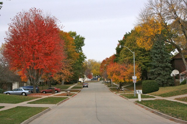 Resignacion. Foto: fall colors West Des Moines, IA. biteslife.com